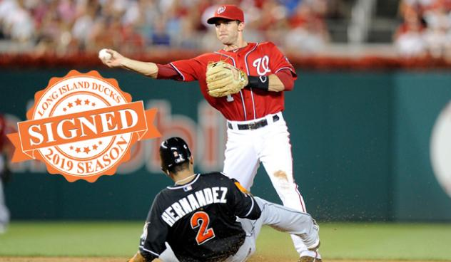Infielder Steve Lombardozzi with the Washington Nationals