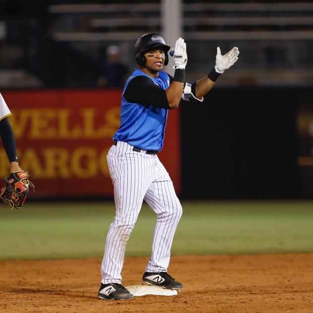 Tyler Hill of the Tampa Tarpons exhorts his teammates