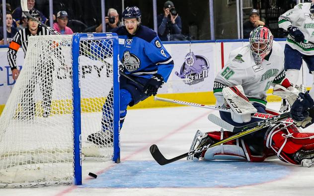 Jacksonville Icemen forward Cam Maclise reacts after a goal against the Florida Everblades