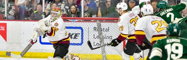 Chicago Wolves vs. the Iowa Wild