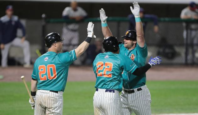Long Island Ducks celebrate Kirk Nieuwenhuis' home run