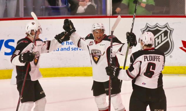 Vancouver Giants celebrate a goal last season