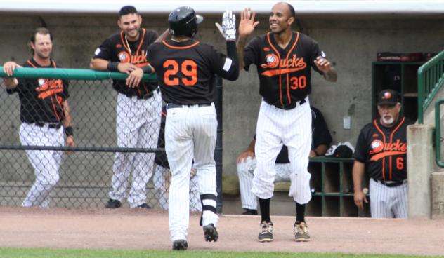 Daniel Fields and David Washington of the Long Island Ducks exchange high fives