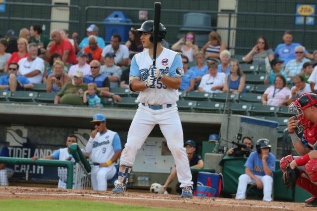 Tyler Durna at bat for the Myrtle Beach Pelicans