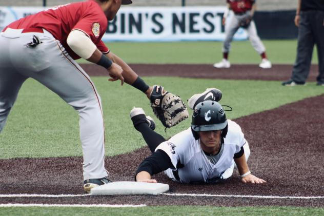 Lakeshore Chinooks dive back to first against the Wisconsin Rapids Rafters