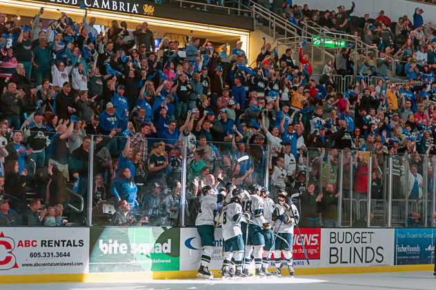 Sioux Falls Stampede celebrate a goal in front of the home crowd