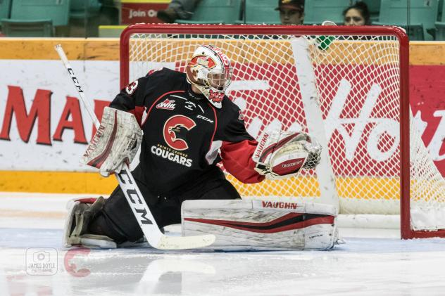 Goaltender Isaiah DiLaura with the Prince George Cougars