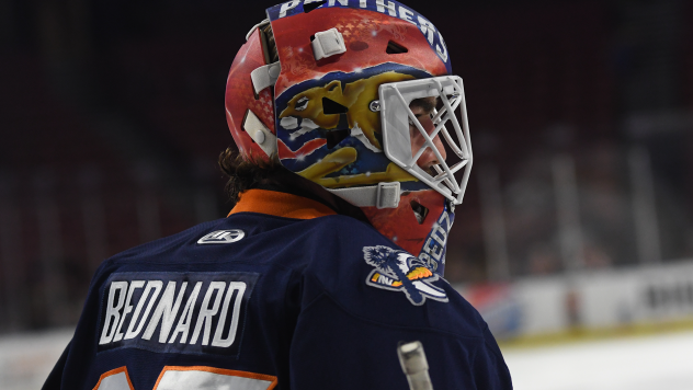 Greenville Swamp Rabbits goaltender Ryan Bednard