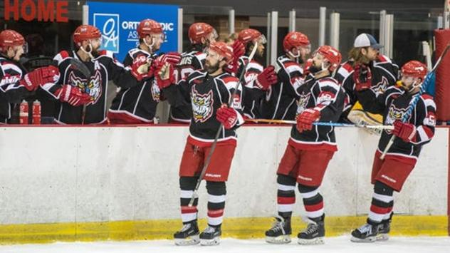 Port Huron Prowlers exchange high fives with the bench