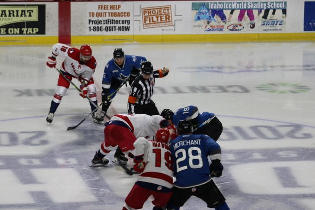 Allen Americans face off with the Idaho Steelheads