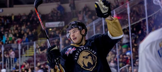 Newfoundland Growlers forward Scott Pooley