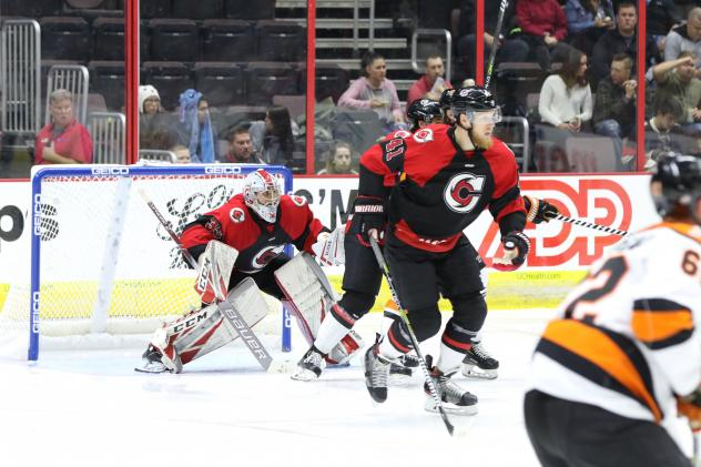 Goaltender Sean Romeo with the Cincinnati Cyclones