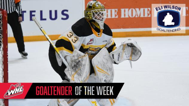 Brandon Wheat Kings goaltender Jiri Patera