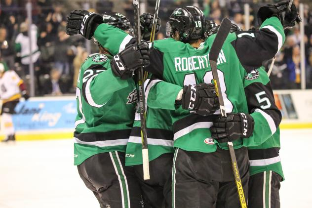 Texas Stars celebrate a goal against the Chicago Wolves