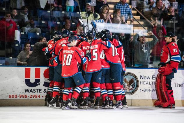 Springfield Thunderbirds celebrate a goal in front of the crowd