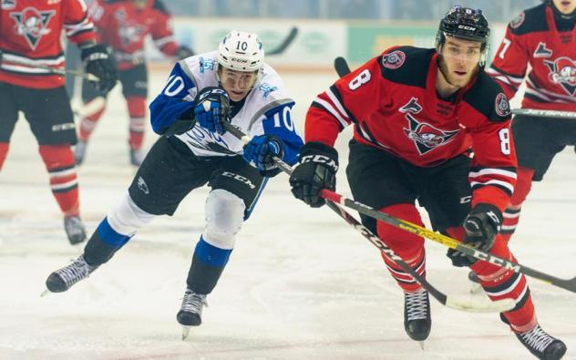 Saint John Sea Dogs left wing Charles Savoie vs. the Drummondville Voltigeurs