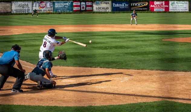 Nick Marinconz at bat for the St. Cloud Rox