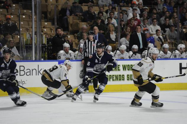 Defenseman Anthony Florentino with the Worcester Railers