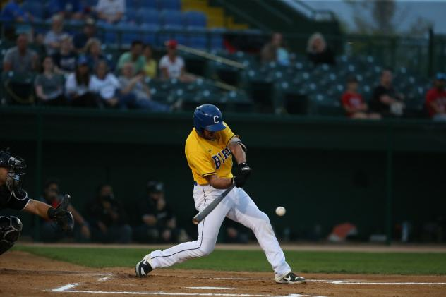 Sioux Falls Canaries in the American Association Championship Series