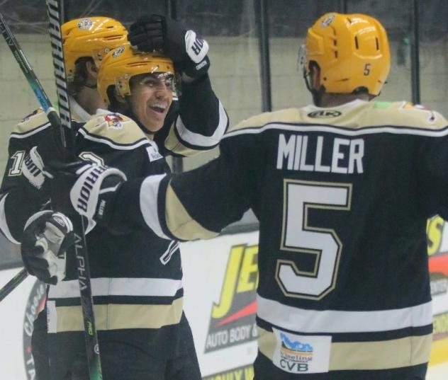 Wheeling Nailers celebrate a goal against the Indy Fuel