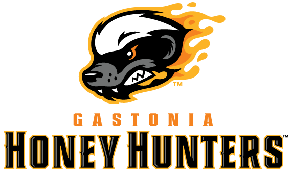 Gastonia Honey Hunters logo