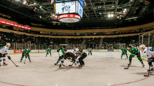 Texas Stars vs. the San Jose Barracuda