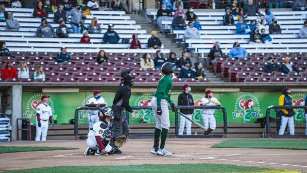 Beloit Snappers at the plate against the Wisconsin Timber Rattlers