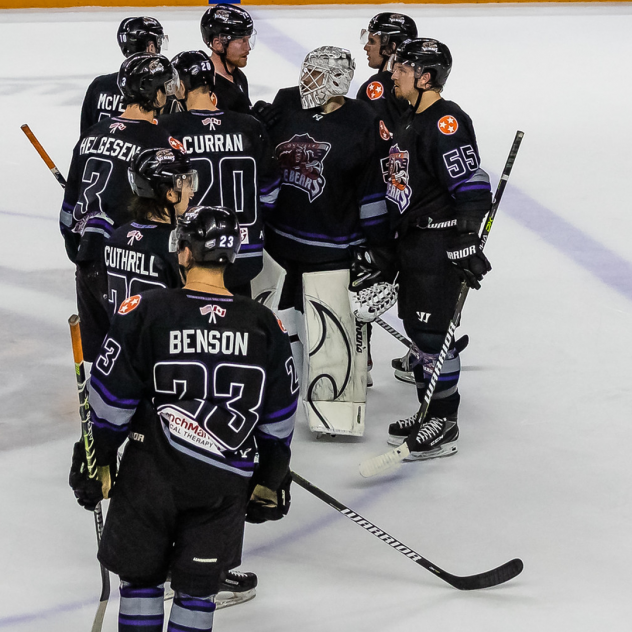Knoxville Ice Bears huddle to end the season