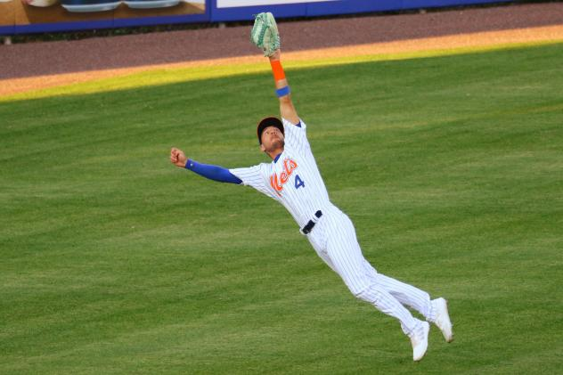 Albert Almora Jr. makes a diving catch in the top of the third inning on Wednesday night for the Syracuse Mets