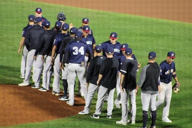 Somerset Patriots exchange congratulations after a win