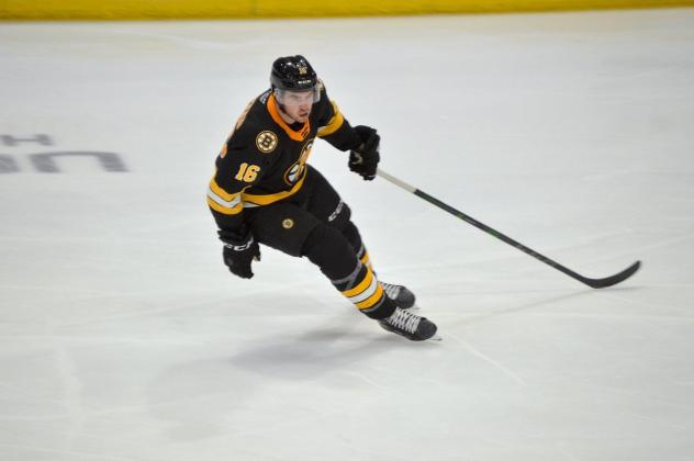 Forward Justin Brazeau with the Providence Bruins