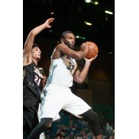 Jordan Hamilton of the Reno Bighorns