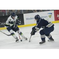 Sioux Falls Stampede vs. Bloomington Thunder
