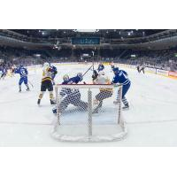 Toronto Marlies vs. Chicago Wolves