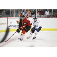 Indy Fuel vs. Toledo Walleye