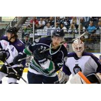 Florida Everblades vs. Reading Royals