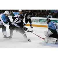 Utah Grizzlies vs. Alaska Aces