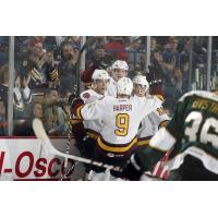 Chicago Wolves vs. Texas Stars