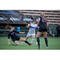Seattle Reign FC vs. Washington Huskies