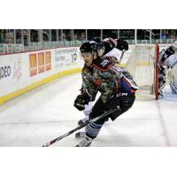 Wichita Thunder vs. Brampton Beast