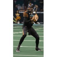 Arizona Rattlers in Action