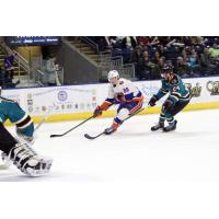 Bridgeport Sound Tigers vs. Worcester Sharks