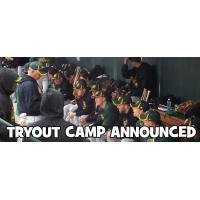 CornBelters Tryout Camp