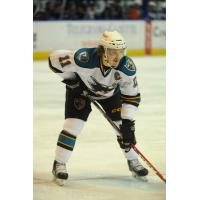 Worcester Sharks Forward Bryan Lerg