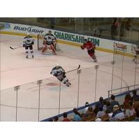 Worcester Sharks vs. Albany Devils