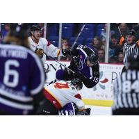 Reading Royals vs. Indy Fuel