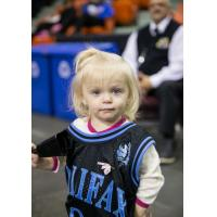 Halifax Rainmen Fan