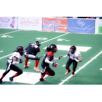 Texas Revolution in Action