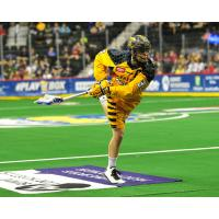Minnesota Swarm in Action