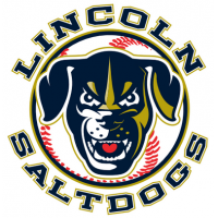 Lincoln Saltdogs New Dog Head Logo